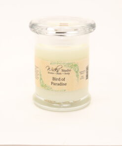 status candle bird of paradise 8oz