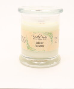 status candle bird of paradise 12oz