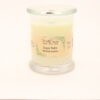 status candle sugar baby watermelon 12oz